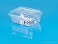 single-used clear plastic  hinged  food