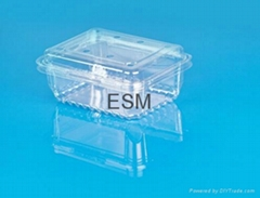 single-used clear plastic  hinged  food