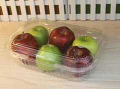 single-used  plastic transparent  food hinged clamshell for fruit