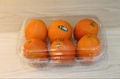 single-used  plastic transparent  food hinged clamshell for fruit  2