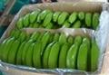 Green Banana 2