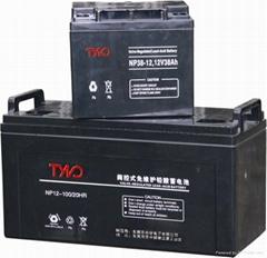 供应铅酸免维护蓄电池