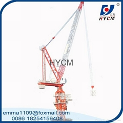 model of D120 luffing jib tower crane cheap price
