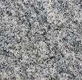 New G603 light grey granite slabs tiles