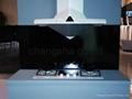 手板模型&智能联控烟灶