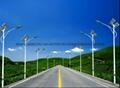 武汉欧尔6米30瓦太阳能路灯 3