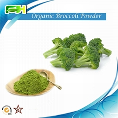 Broccoli extract Organic Broccoli Powder