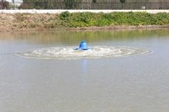 涌浪式增氧泵