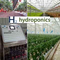 Large multispan greenhouse for hydroponics