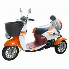2016 Disabled 3 Wheel El