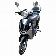 200W~500W Electric Mobil
