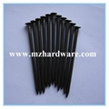 common nails,wire nail,round nail