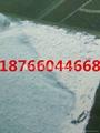 珍珠岩门芯板双面贴布机就选鑫达     4