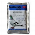 Best Price Antibiotics Pigeon Racing