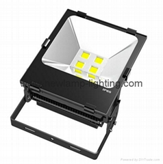 10-200W LED Floodlight