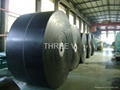 Widely Used Conveyor Belts with Great Price EP300