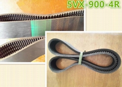 3VX 5VX Cogged Banded V-belt from China Manufacturer