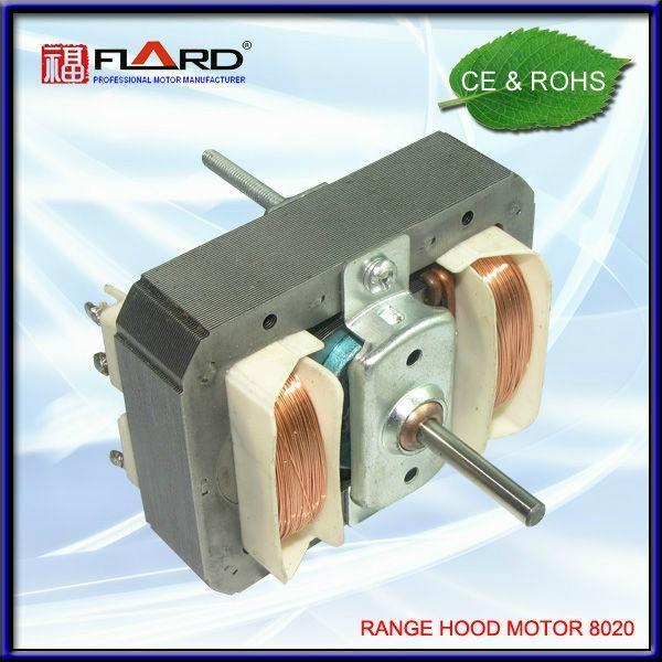 Hood motor