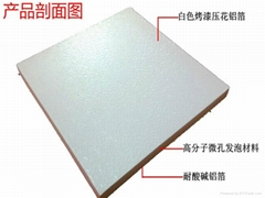 Fireproof ceiling boards