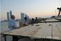 优质防腐建筑用松木lvl脚踏板