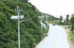 Countryside Road Maglev Wind Turbine Vertical Axis Wind Generators