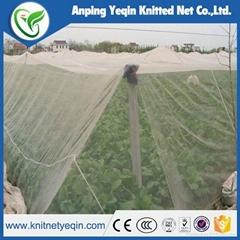 China manufaturer 100%HDPE with UV anti hail net