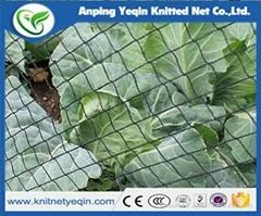 China Manufacturer High Quality Anti bird net