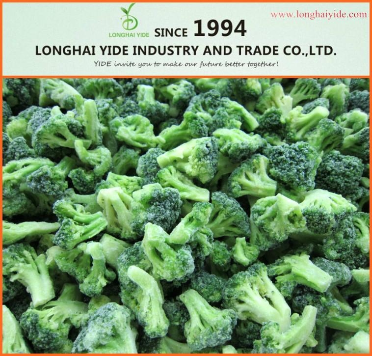 LONGHAI YIDEIQF broccoli Frozen broccoli  1