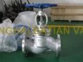 API Standard Cast Steel Globe Valve 3