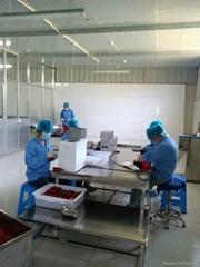 Ningxia Baishi Hengxing Food Technology Co.,Ltd