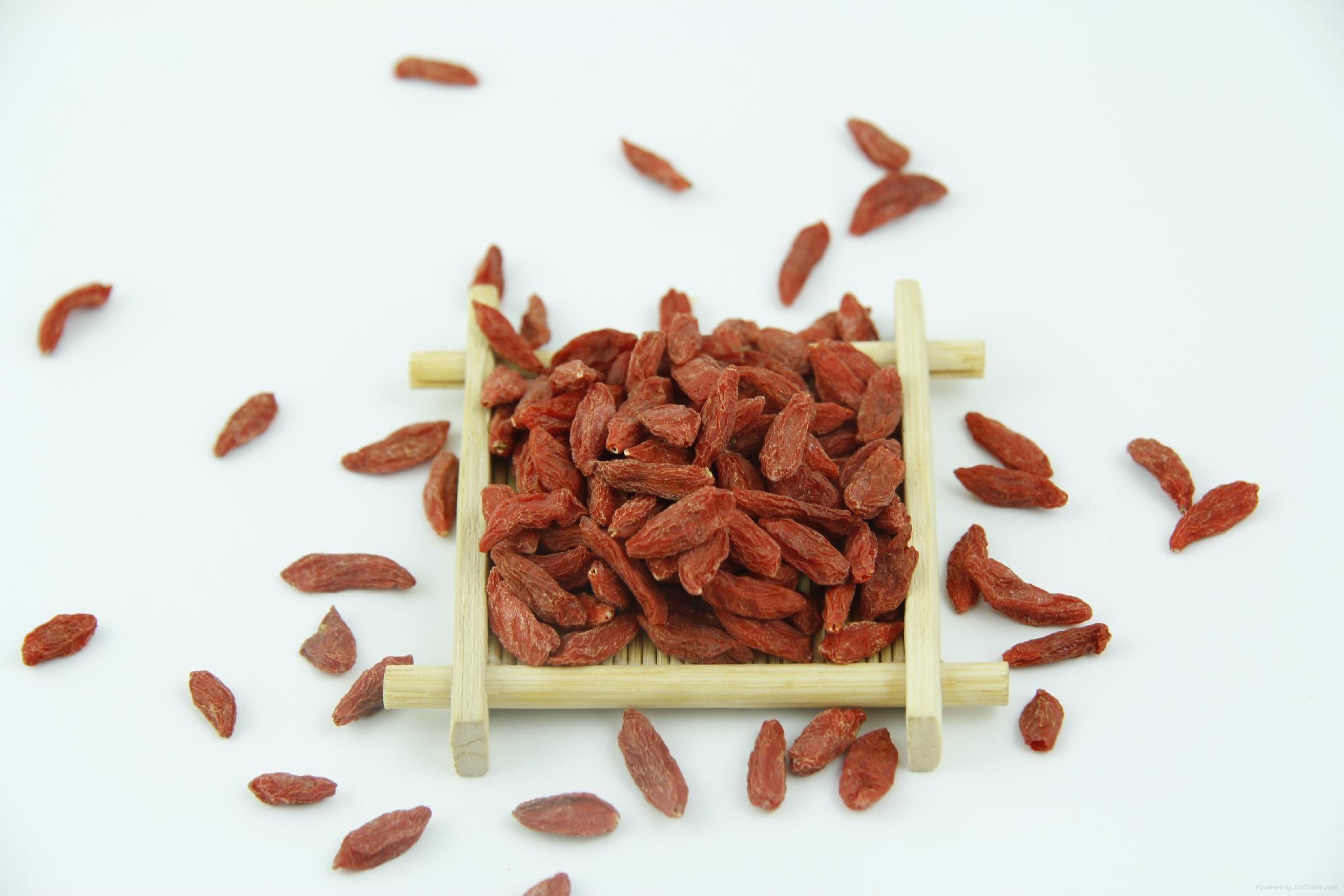 High quality Goji Berry dried fruit 380 grains/50G for sale Ningxia Goji berries 1