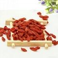 High quality Goji Berry dried fruit 380 grains/50G for sale Ningxia Goji berries 5