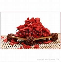 Chinese Wolfberry Gouqizi 220 grains per