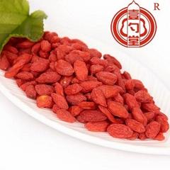 Ningixia dried goji berry chinese wolfberry