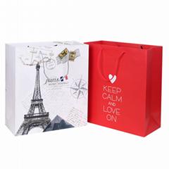 Custom own design logo paper shopping gift bag