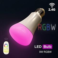 球泡燈/LED
