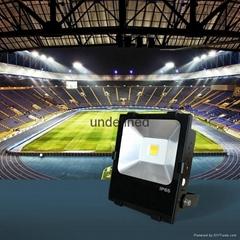 50W色溫冷白暖白智能投光燈WIFI手機控制LED