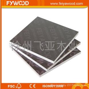FYWOOD 棕膜建築覆膜板 1