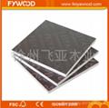 FYWOOD 棕膜建築覆膜板