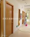 賓館酒店用橫紋木皮烤漆門 3