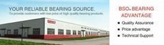 Liaocheng Baishi(B&S) Bearings Co.,Ltd.