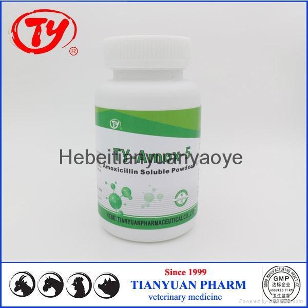 chicken antibiotics Amoxicillin Soluble Powder 5% 1
