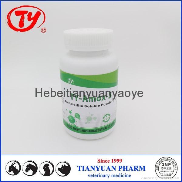 chicken antibiotics Amoxicillin Soluble Powder 5% 3