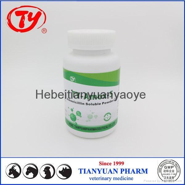 chicken antibiotics Amoxicillin Soluble Powder 5% 5