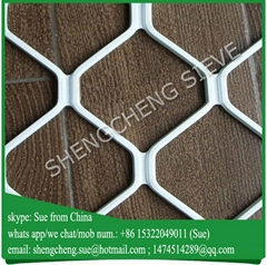 Powder coated black color grill mesh designs for doors