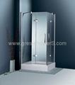 Frameless 10mm tempered glass Hinge Door shower enclosure 1