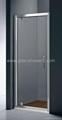 Pivot Swing Shower Door