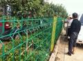 武汉绿化带隔离网 2