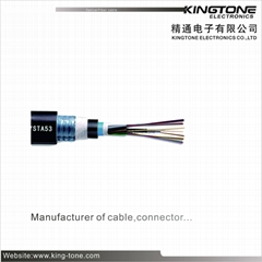 GYTA53 Outdoor Fiber Optic Cable  Layer-Stranded Reinforced Armored Double Sheat