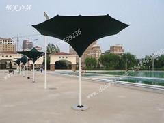 大連喇叭花傘